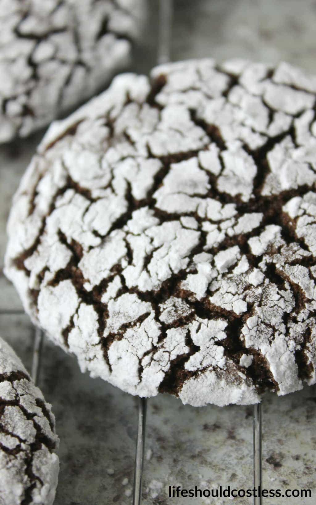 Spicy Chocolate Crinkle Cookies FI