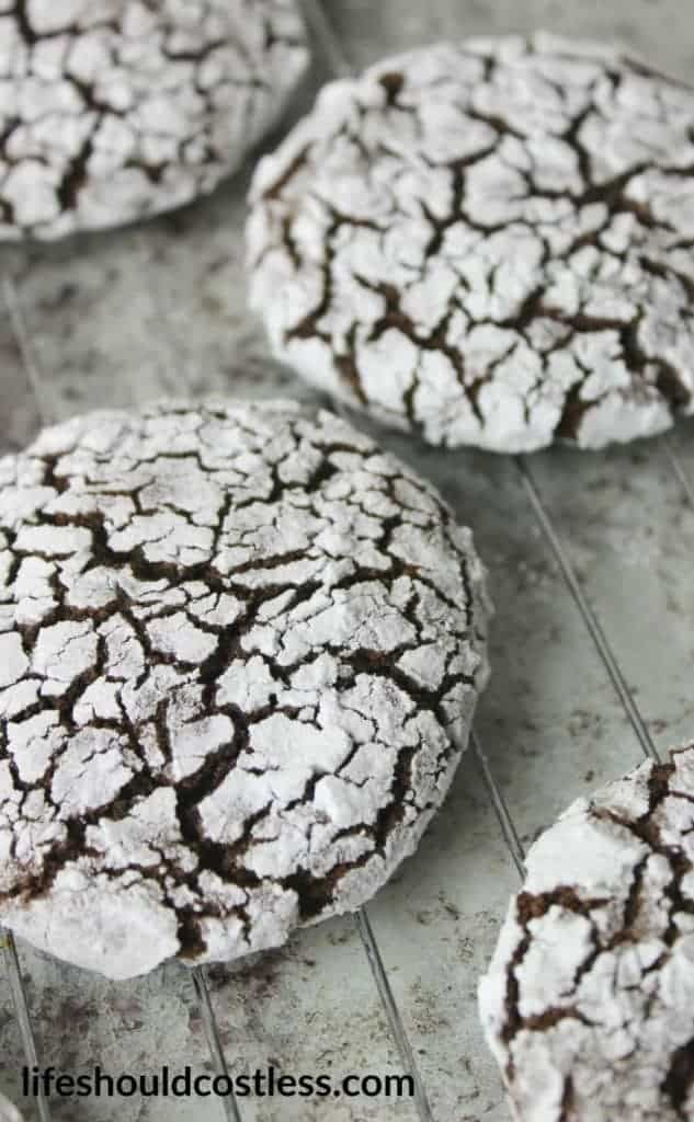 Spicy Chocolate Crinkle Cookies. With a hint of Cayenne Pepper and Cinnamon, these cookies have a surprising kick. Make them as hot or as tame as you like. {lifeshouldcostless.com}