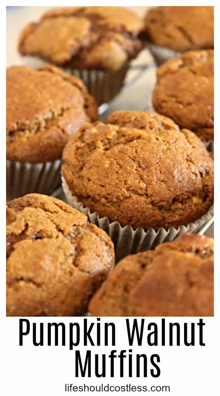 Easy and delicious big batch (3 dozen) Pumpkin Walnut Muffins. It uses an entire large can of pumpkin. They're delicious and moist and perfect for a bake sale or large gathering. lifeshouldcostless.com