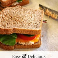 Easy & Delicious Tuna Melts