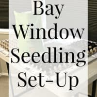 2015 Garden Prep: Corner Window Seed Soaking & Bay Window Seedling Set-Up