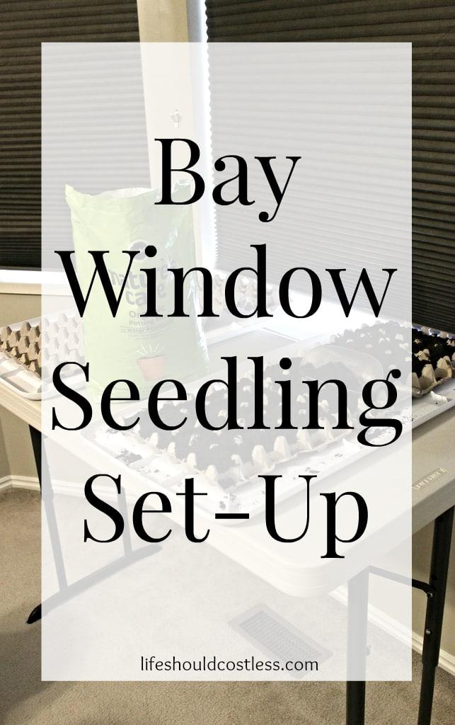 2015 Garden Prep: Corner Window Seed Soaking & Bay Window Seedling Set-Up