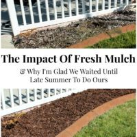 The Impact Of Fresh Mulch & Why I'm Glad We Waited Until Late Summer To Do Ours