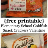 "{Free Printable} Elementary School Goldfish Snack Crackers Valentine {""I'm hooked on you"" & ""I fish you'd be my Valentine""}"