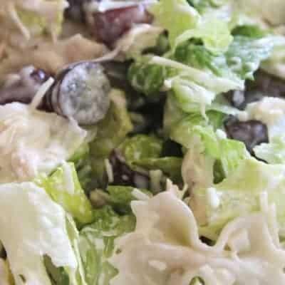 Bow Tie Chicken Salad