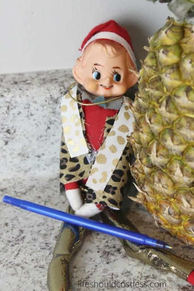 PPAE Pen Pineapple Apple Elf (on the shelf).