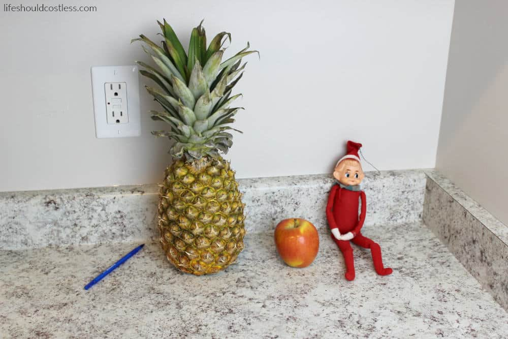 PPAE Pen Pineapple Apple Elf (on the shelf). A simple and inexpensive elf on the shelf idea. {lifeshouldcostless.com}