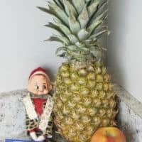 PPAE Pen Pineapple Apple Elf (on the shelf)