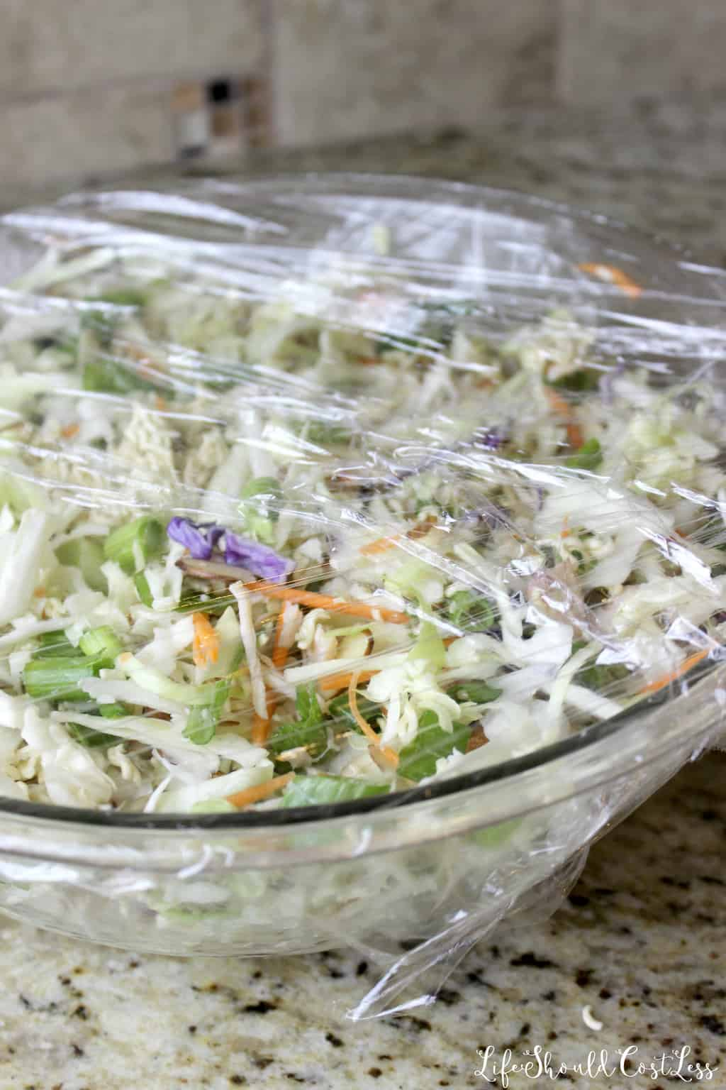 The best oriental Chicken Salad recipe with cole slaw and ramen noodles.