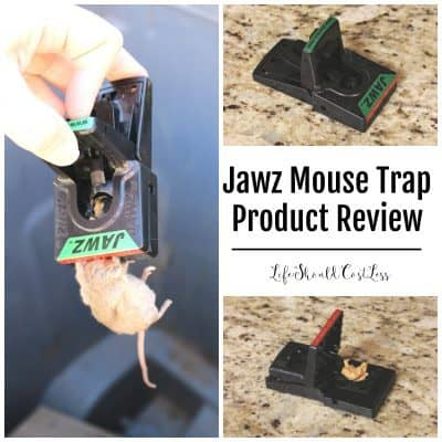 Jawz Mouse Traps Product Review