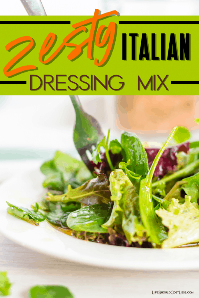 Zesty Italian Dressing Mix Recipe for both the dry mix and the dressing. lifeshouldcostless.com