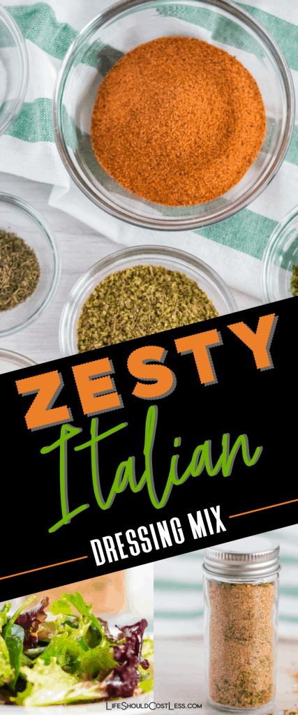 Best Zesty Italian Dressing Mix Recipe. lifeshouldcostless.com