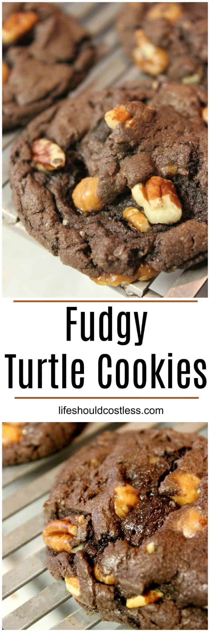 Easy Fudgy Turtle Cookies. They are a tasty cake mix based cookie that take five minutes of prep. They're so delicious! lifeshouldcostless.com