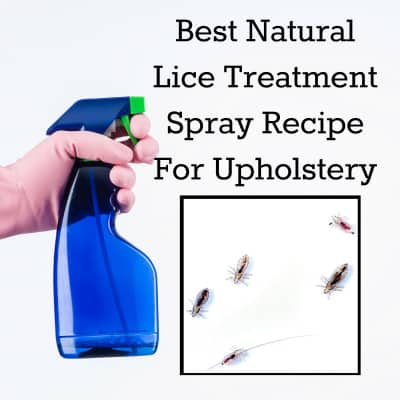Best Head Lice Treatment Spray Recipe For Upholstery (couches, beds, carpet, plush toys, furniture, car interior)