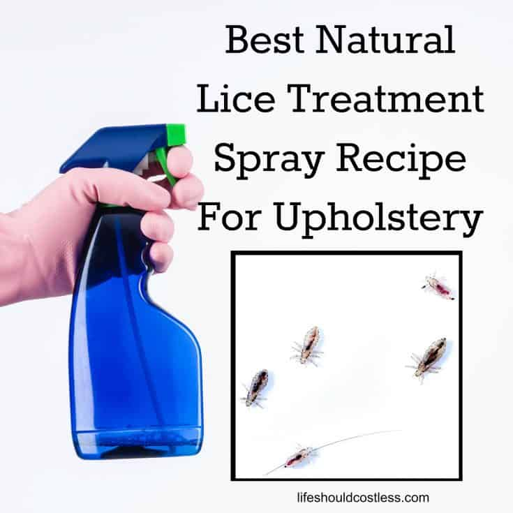 Best Head Lice Treatment Spray Recipe