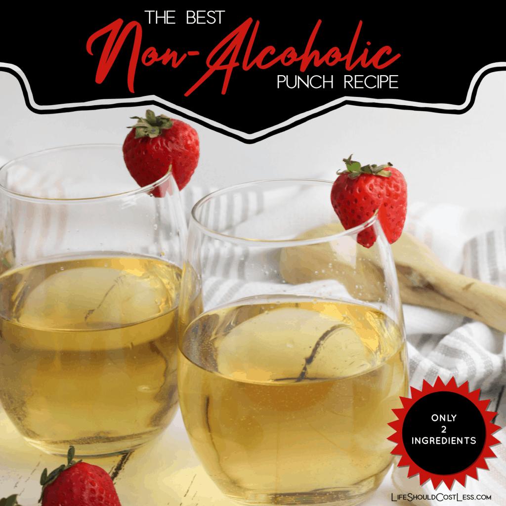 Best Non-Alcoholic Punch Recipe lifeshouldcostless.com