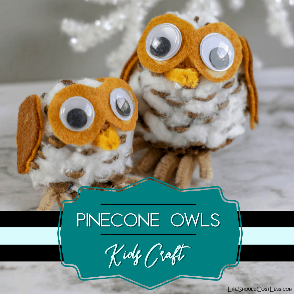 Pinecone Owl Winter Kids Craft lifeshouldcostless.com