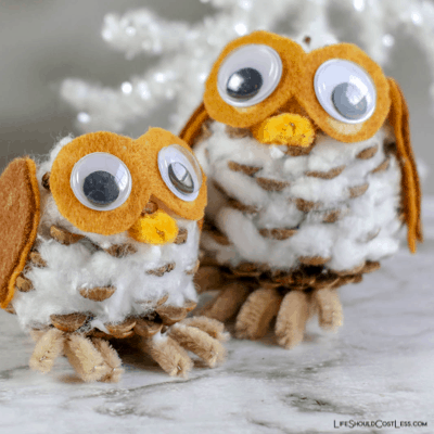 Pinecone Owls Winter Kids Craft lifeshouldcostless.com