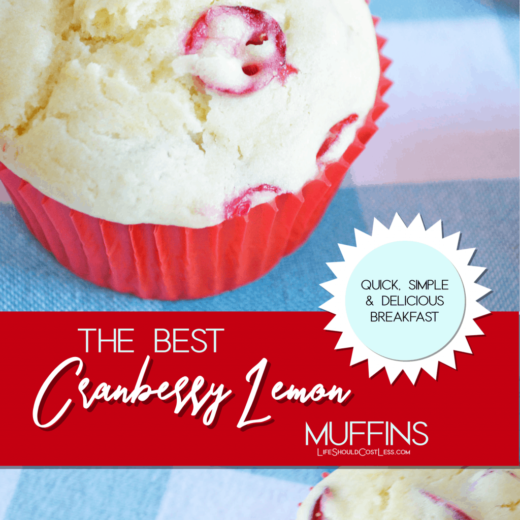 The best cranberry lemon muffins.  lifeshouldcostless.com