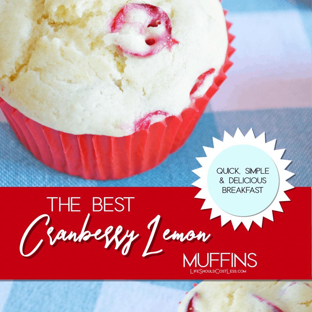 The best cranberry lemon muffins.  lifeshouldcostless.com