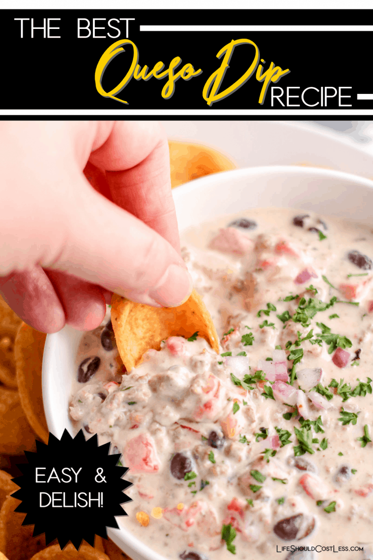 This high protein queso dip recipe is cheesy and delicious, super flavorful, contains lots of protein, and a real crowd pleaser. Take to any large gathering or make yourself a batch at home. The best queso dip! lifeshouldcostless.com