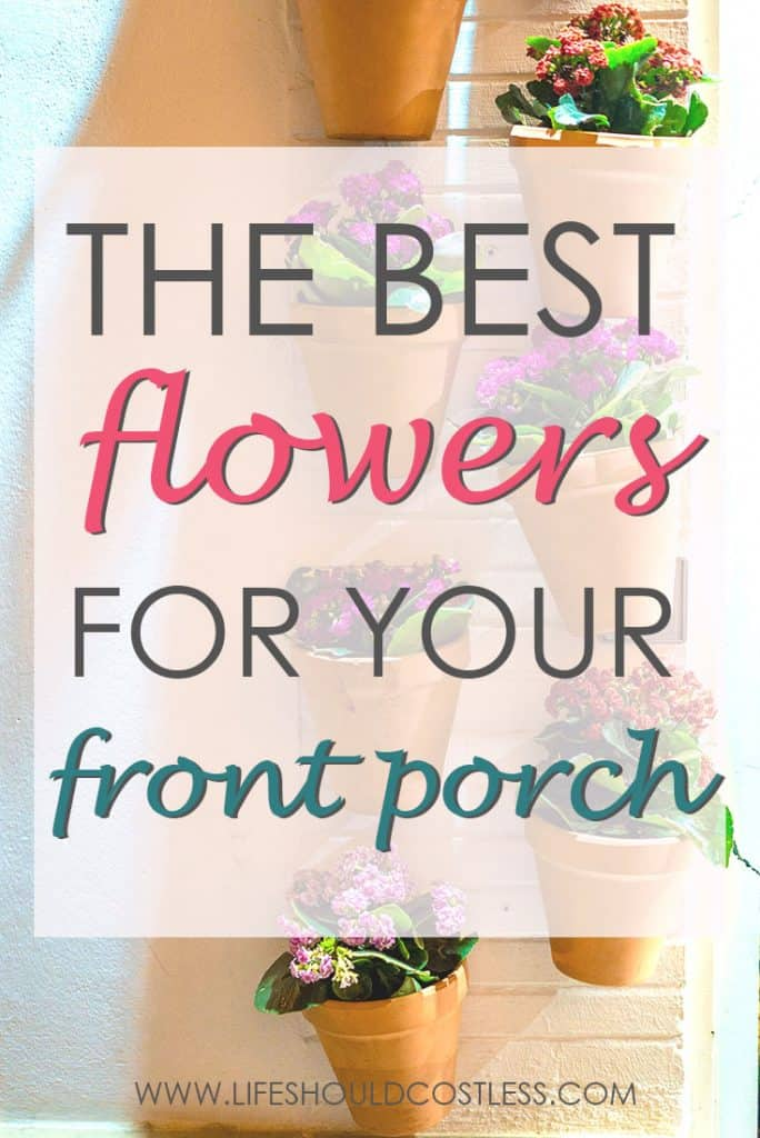 The ten best flowers that will thrive of a covered porch. lifeshouldcostless.com