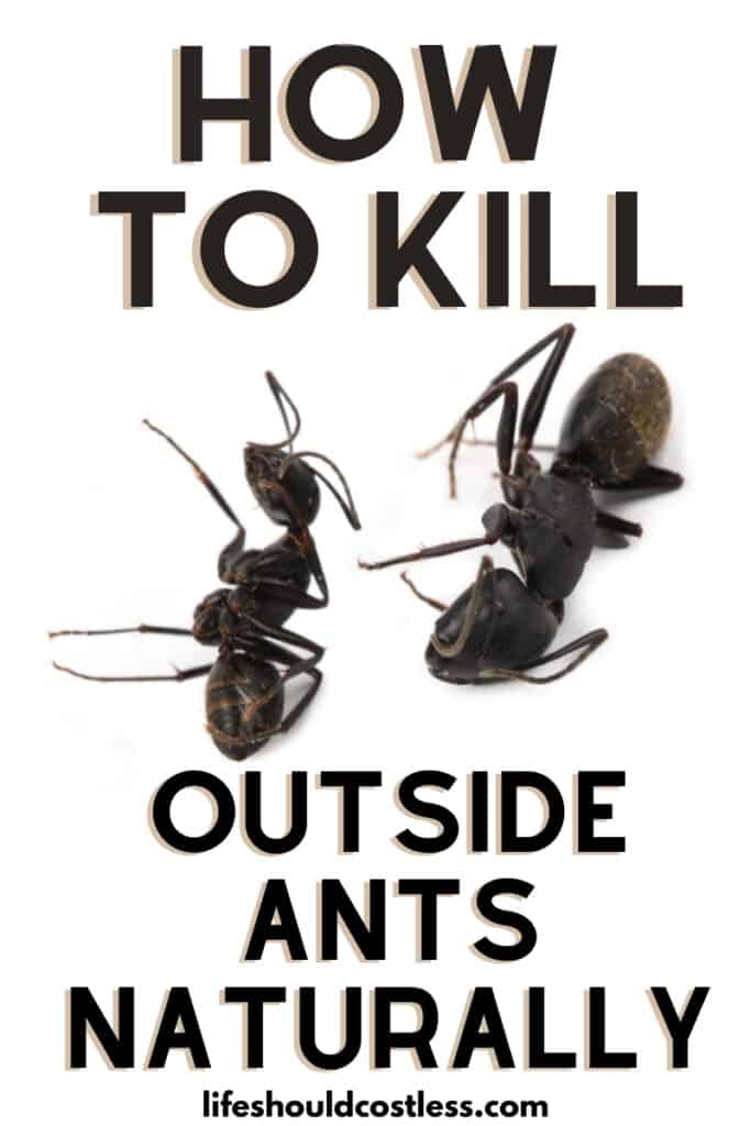 Easy way to kill those outside anthills/piles/colonies in your yard.