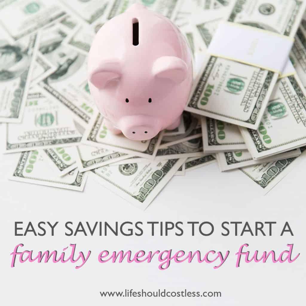 Emergency Fund Savings. lifeshouldcostless.com